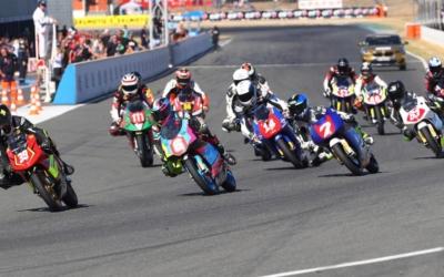 OGP-Championship of France PreMoto3  2019